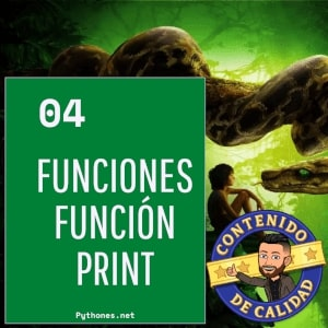 Funciones en python - Función Print