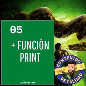 Función print